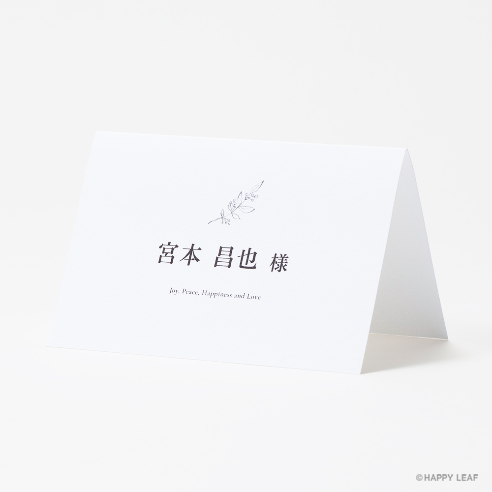 aria ホワイト