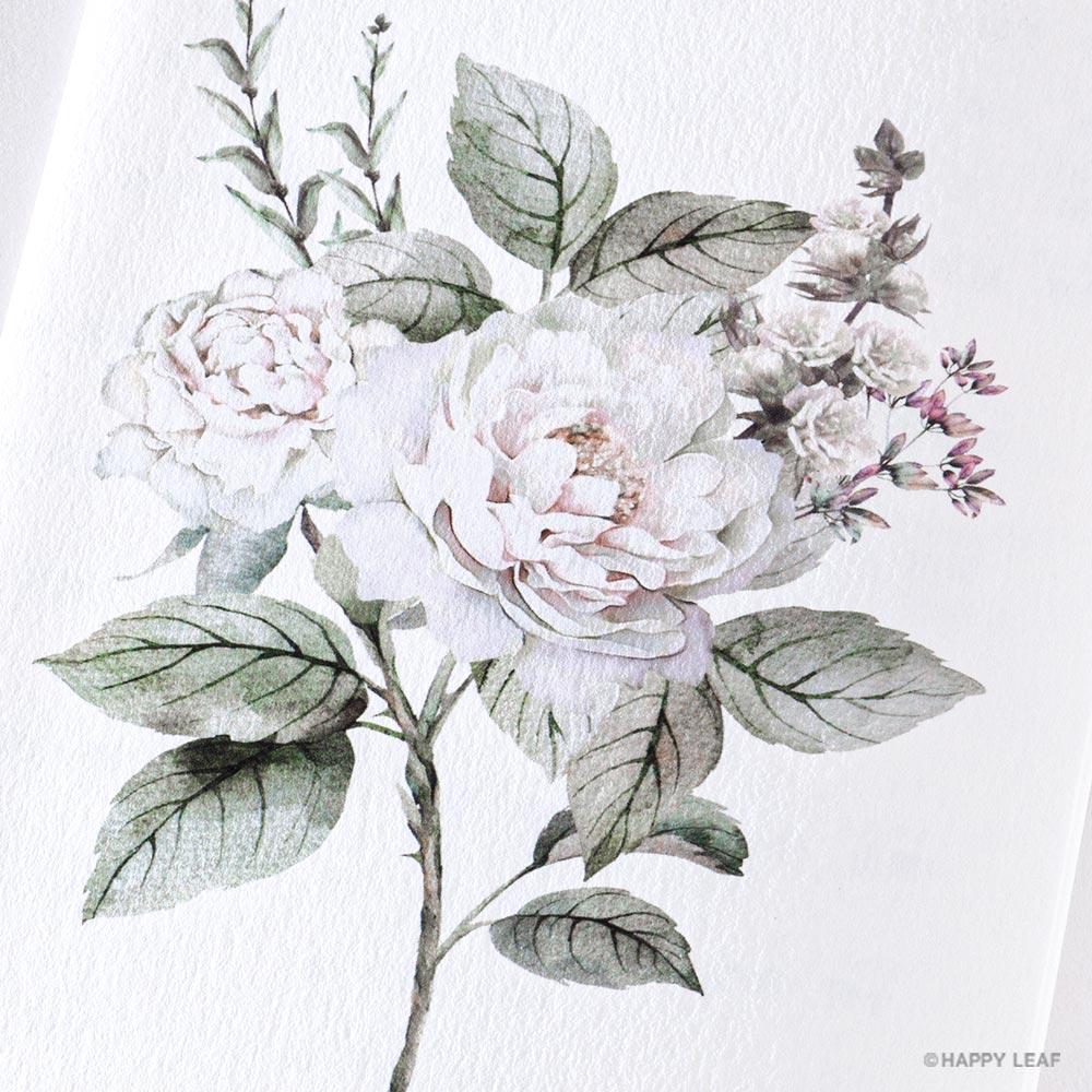 席次表 Ranunculus 5