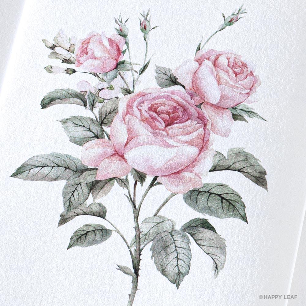 席次表 Rose 5